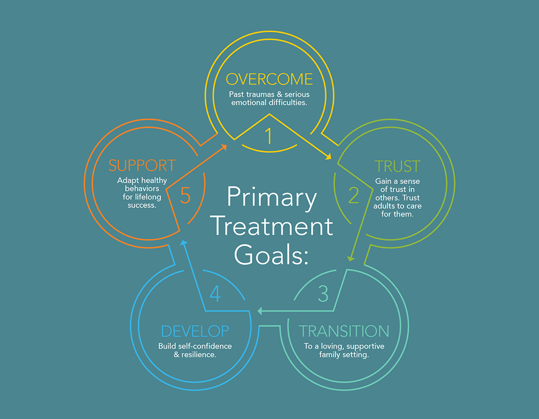 Primary Treatment Goals graphic